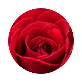 Символика на червеното