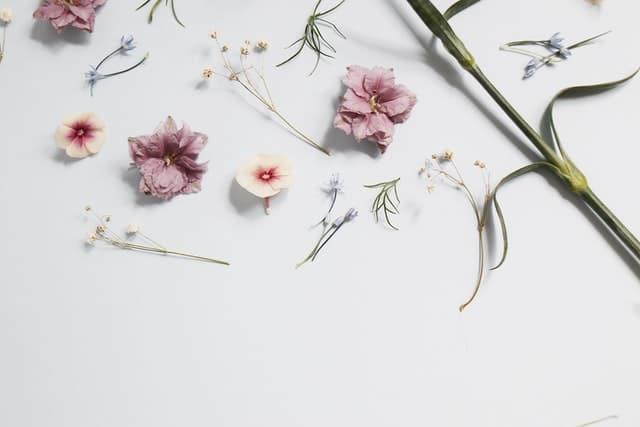 Фотография в минималистичен стил